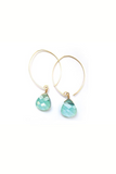 Classic Hoop Crystal Earrings - House of Lucky