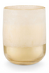 Coconut Milk Mango Large Mojave Glass Candle