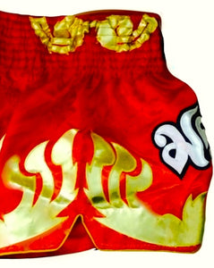 TWINS SPECIAL THAI BOXING SHORTS -TWS-T15