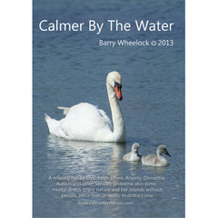 Calmer by the Water DVD