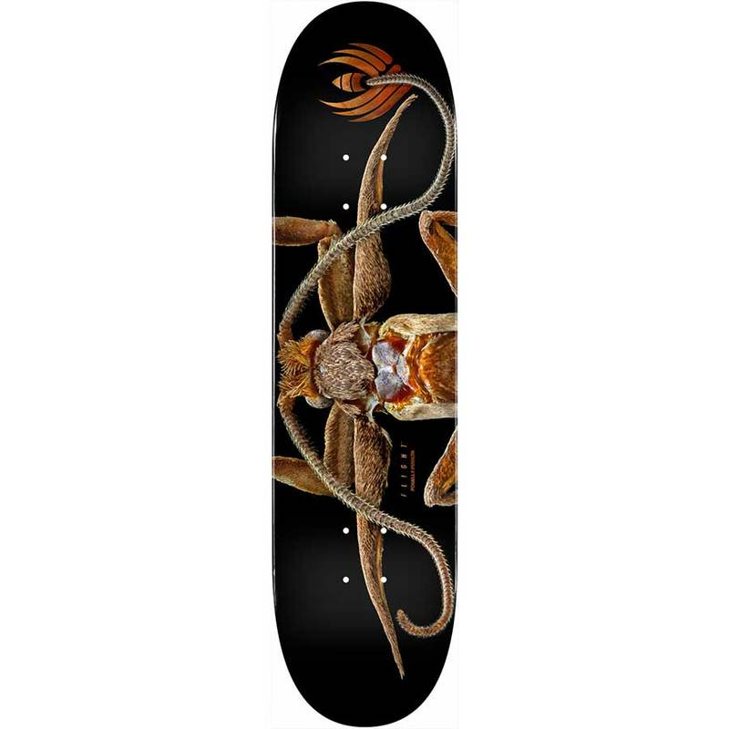 "8.25"" Powell Peralta Deck - Marion Moth"