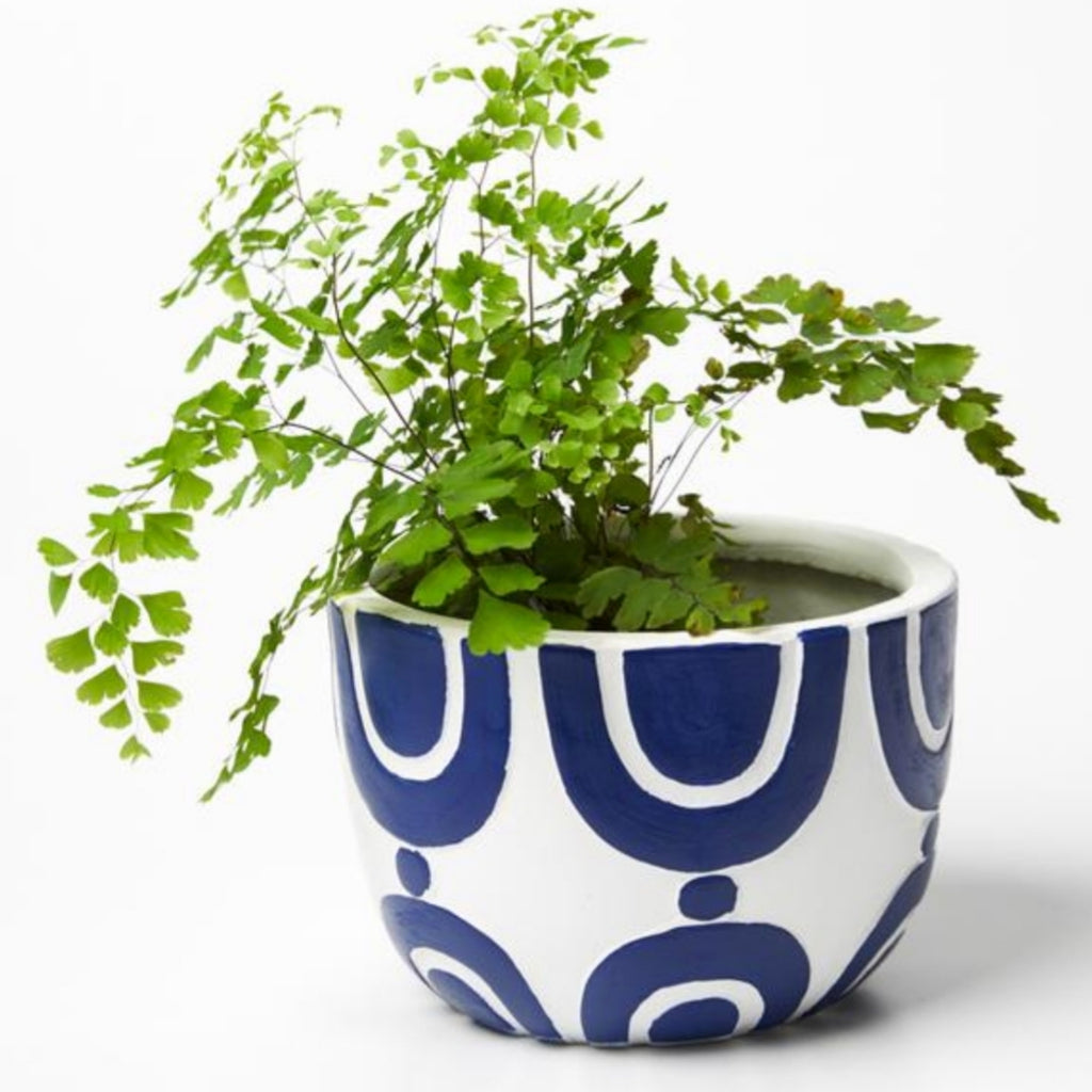 Radius Pot - Blue & White