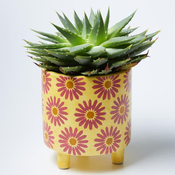 Liberty Pot Yellow