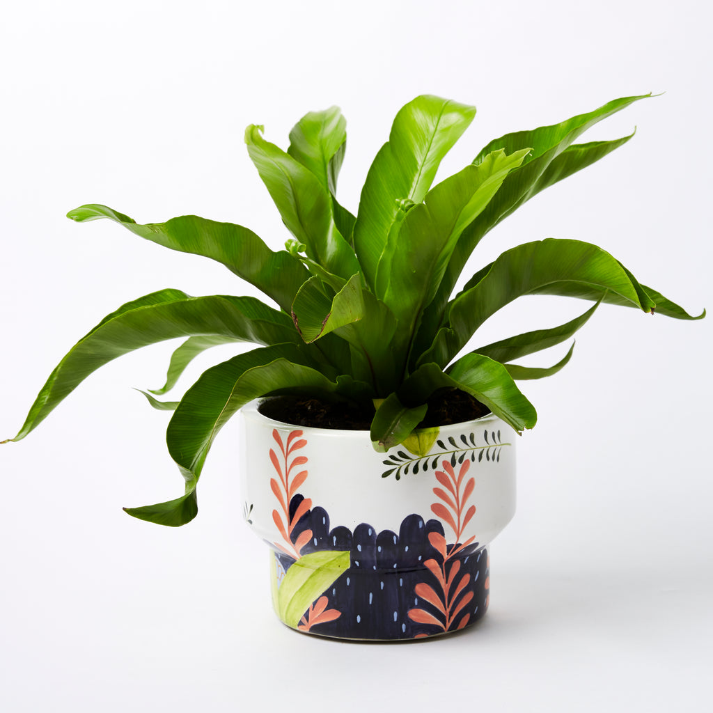 Jungle Girl Planter Pot
