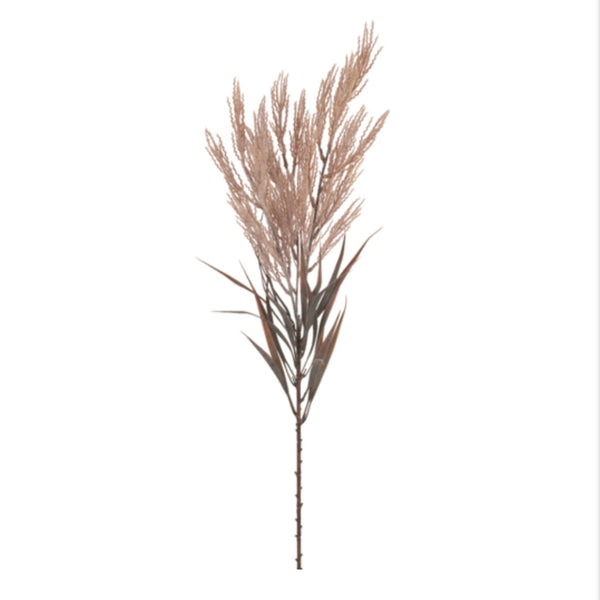 Plume Grass Spray - Dusty Pink
