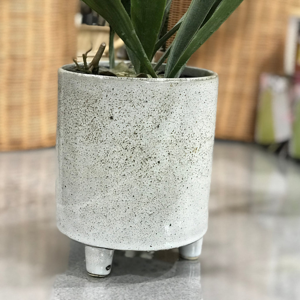 Cosimo Footed Planter