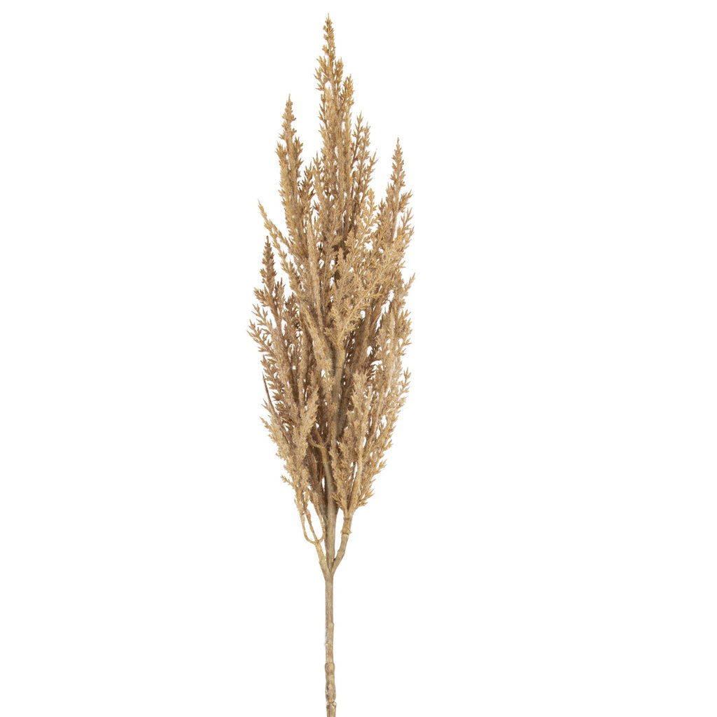 Pampas Grass Spray 83cm Natural