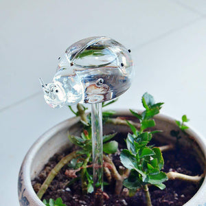 3 Pcs Self-Watering Plant Glass Bulbs