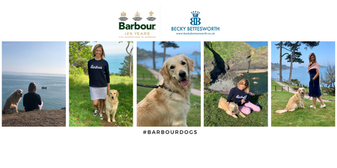 #barbourdogs with Squiggle Bettesworth