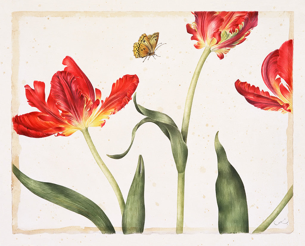 Three Red Tulips // Gertrude Hamilton