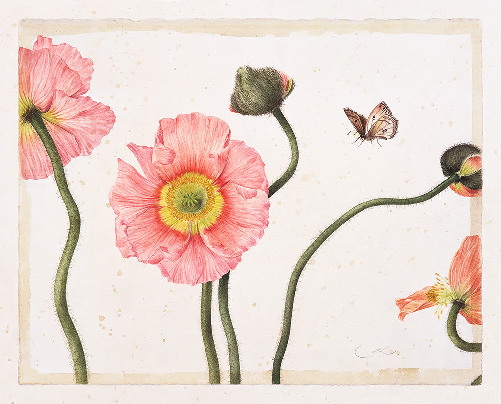 Three Pink Poppies // Gertrude Hamilton
