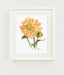 Peaches & Cream Dahlia // Page Lee Hufty
