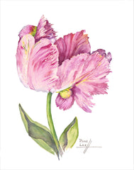 Pink Parrot Tulip // Page Lee Hufty