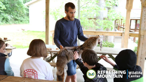 Refreshing Mountain Retreat & Adventure Center: Wildlife Center Admission for Four