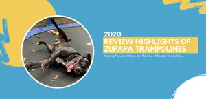 2020 Summary: Inspiring Pictures, Videos, and Reviews of Zupapa Trampolines