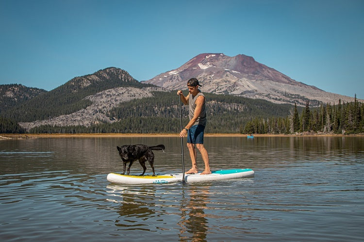 Zupapa Inflatable SUP-paddling with dog