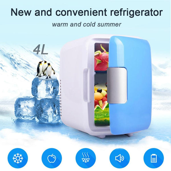 Car/Home Mini Fridge 4L 220V/12V