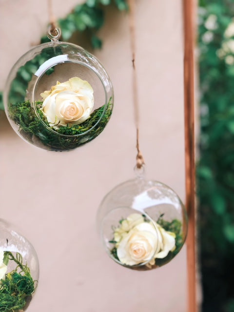 Hanging Terrariums with Fresh Flowers
