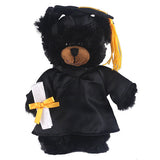 Soft Plush Black Teddy Bear in Graduation Cap & Gown