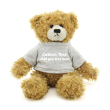 Gray Brandon Beige Teddy Bear