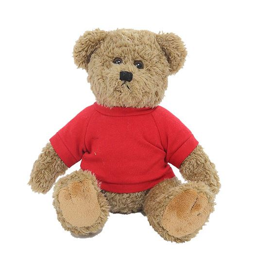 custom teddy bear - Oatmeal Bear with Custom Shirt
