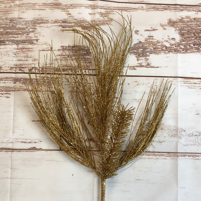 Sparkle Gold Long Leaf Pine