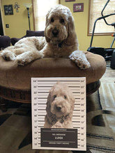 Load image into Gallery viewer, Pet Mugshot - Custom Canvas