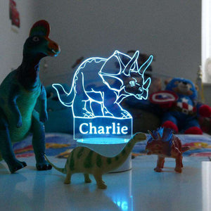 Personalised Dinosaur Night Light