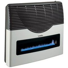 Martin Direct Vent Thermostatic Wall Mounted Heater w/window 20,000 Btu