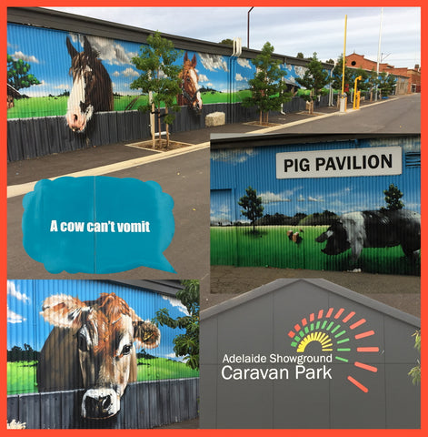 collage of animal murals at the Adelaide Showground, South Australia.