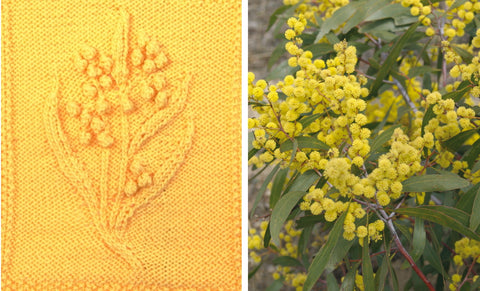 Knitted blanket featuring wattle blossoms and photo of Australian golden wattle.