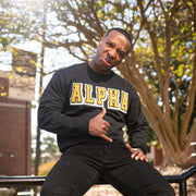 Black Alpha Sweatshirt