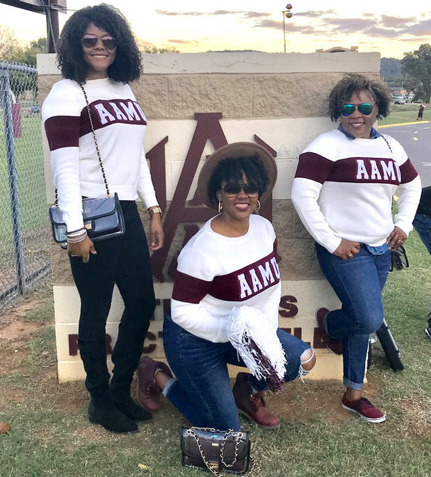 AAMU Color Block Sweater