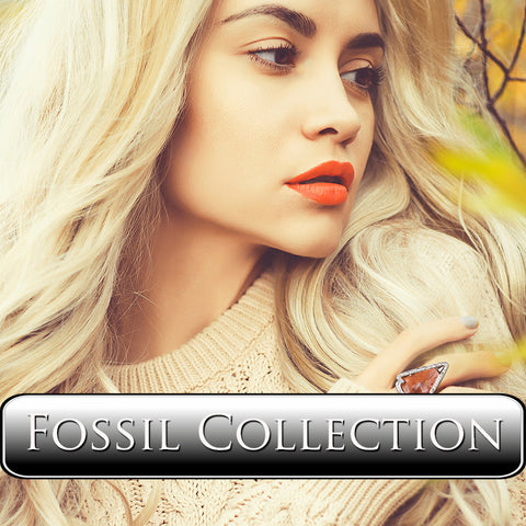 Vincent Peach Fossil Collection