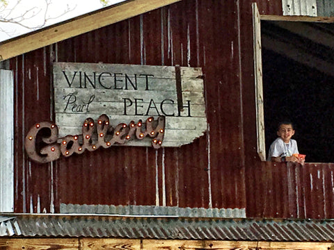 Vincent Peach Round Top Gallery