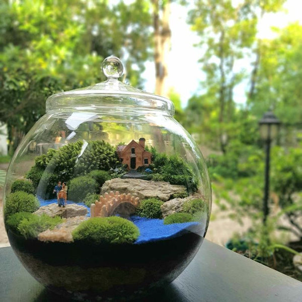 8 Easy Steps for Planting Terrariums
