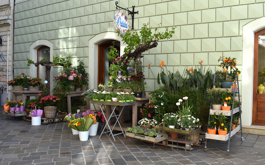 Outdoor living Display | OASIS Floral Products