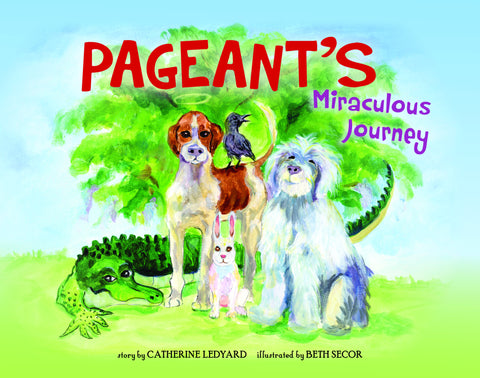 Pageant's Miraculous Journey - ***COMING SOON***