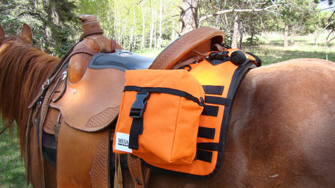 Small saddlebag set