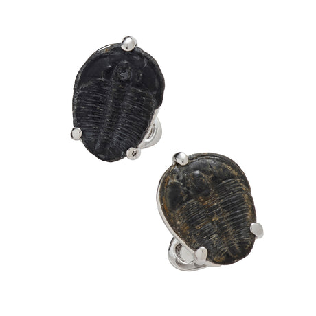 Delta Trilobite Sterling Silver Cufflinks - Jan Leslie Cufflinks and Accessories