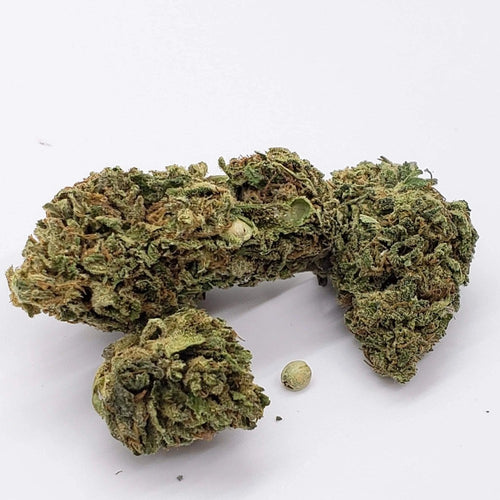 Hawaiian Haze Strain Hemp Buds 3.5 Gram Pack Special CBD Flower