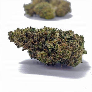 Suver Haze Premium Select  Hemp Flower Buds
