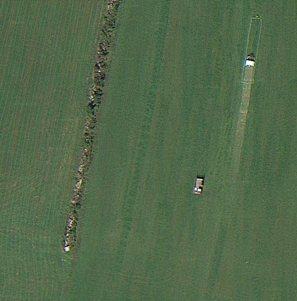 Hayfield Restoration With Chickens: The Exciting Results Can Be Seen From Space!