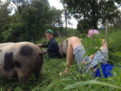 Casey Wing and his Pig Friends