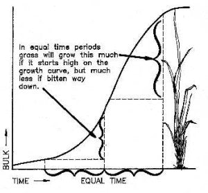 graph showing the stages of growth expressed by a blade of grass