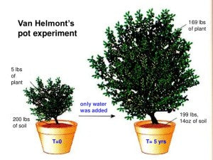 van Helmont's mass-of-a-plant experiment