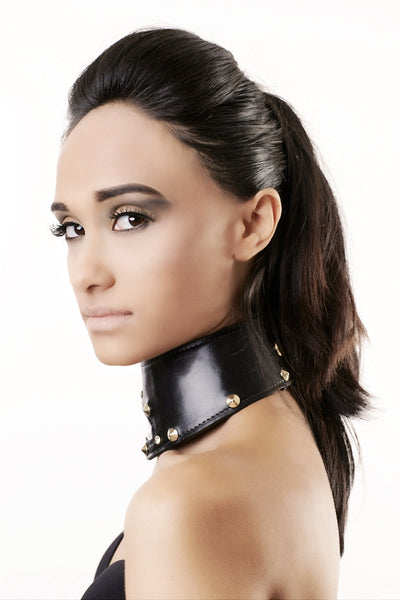 Studded Leather and PVC Choker
