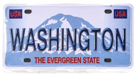 License Plate Magnet