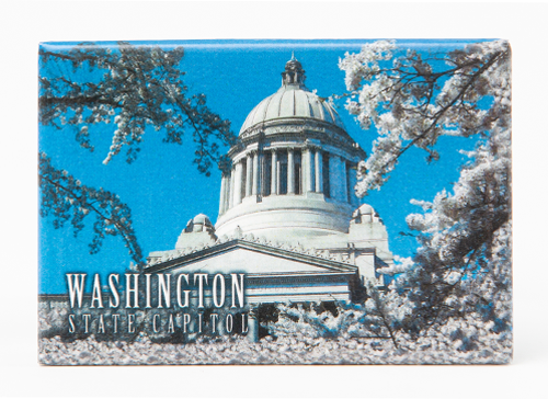 Photo Magnets Capitol with Cherry Blossoms 1206
