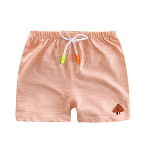 Summer Flamingos Shorts